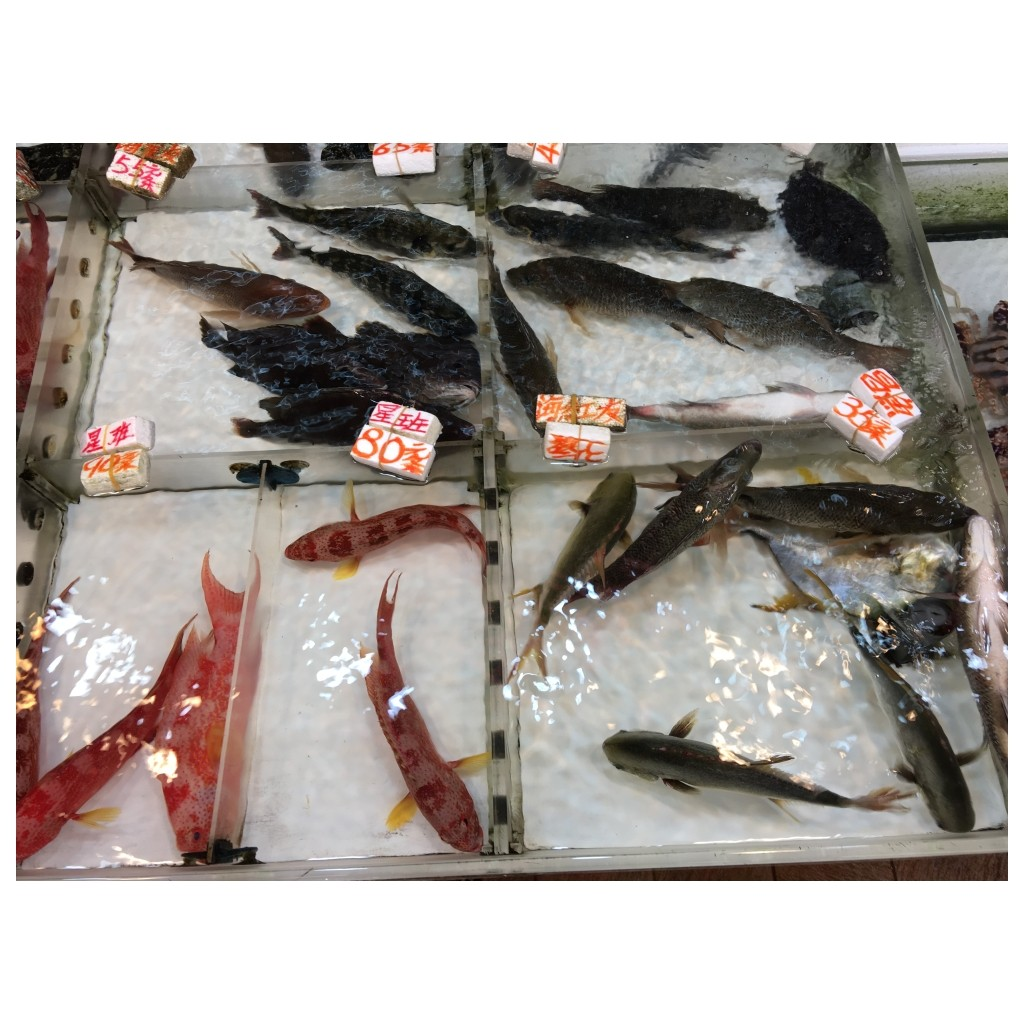 Fish at the food market