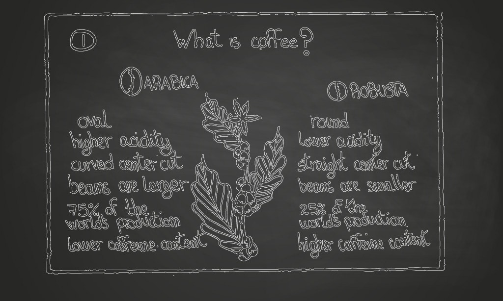 What is coffee | Angelo Carbone | Angelo Carbone